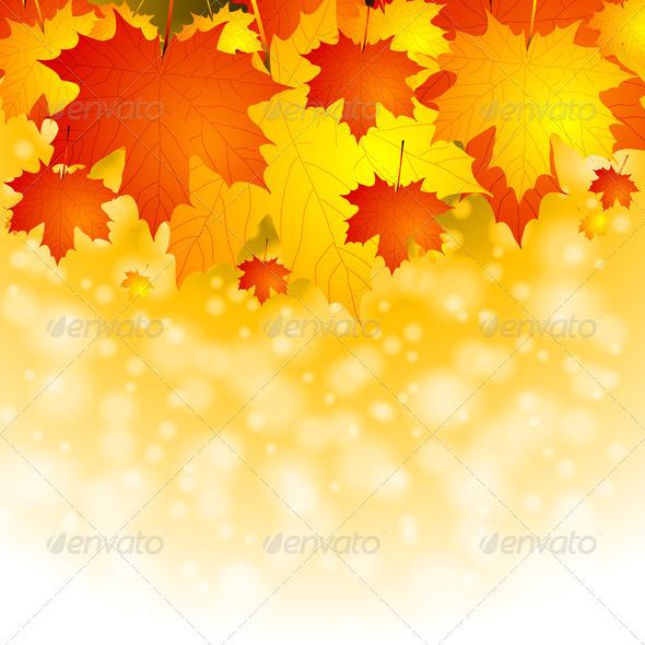 Colourful autumn background - Seasons Nature