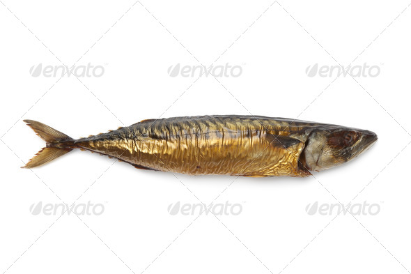 Whole single fresh steamed mackerel fish - Stock Photo - Images