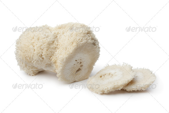 Pom pom mushroom - Stock Photo - Images