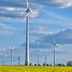 Wind turbines in a flowering canola field - PhotoDune Item for Sale