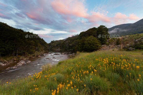 Sunset in Cobb valley of Kahurangi NP, New Zealand - Stock Photo - Images