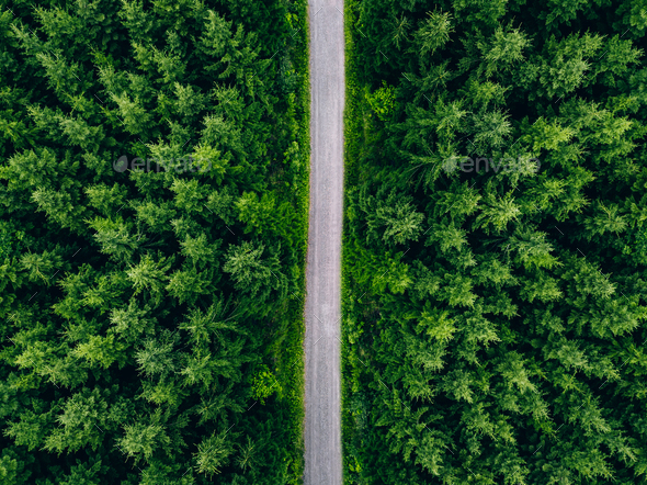 Aerial top view of road in green fir woods. Green forest with country road in Finland. - Stock Photo - Images