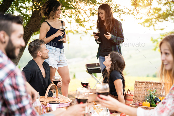 Group of people having fun eating and drinking wine at picnic party outdoors - Stock Photo - Images