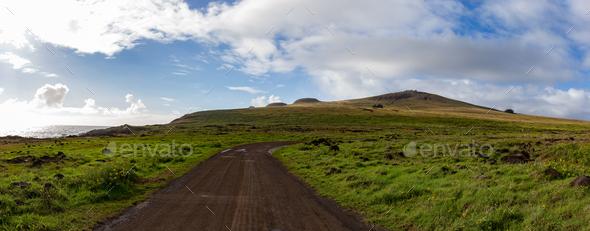Horses on Coastal Pasture - Easter Island Landscape. Roud to Anakena - Stock Photo - Images