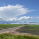 Soybean fields with young plants and a dirt road under dramatic clouds in southwestern Minnesota - PhotoDune Item for Sale