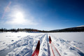 Cross Country Skiing - PhotoDune Item for Sale