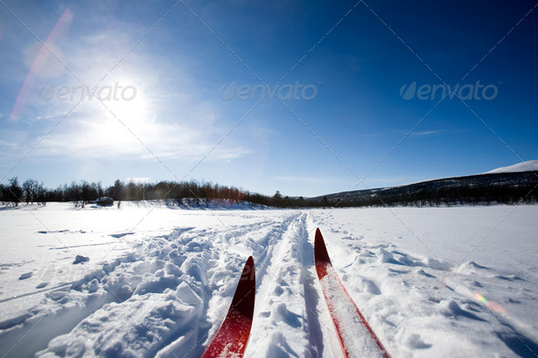 Cross Country Skiing - Stock Photo - Images