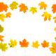 Maple autumn leaves frame on isolated white background - PhotoDune Item for Sale