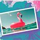 Summer Party Intro - VideoHive Item for Sale