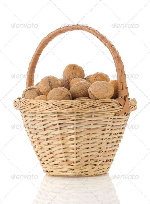 Isol bask nut - Stock Photo - Images