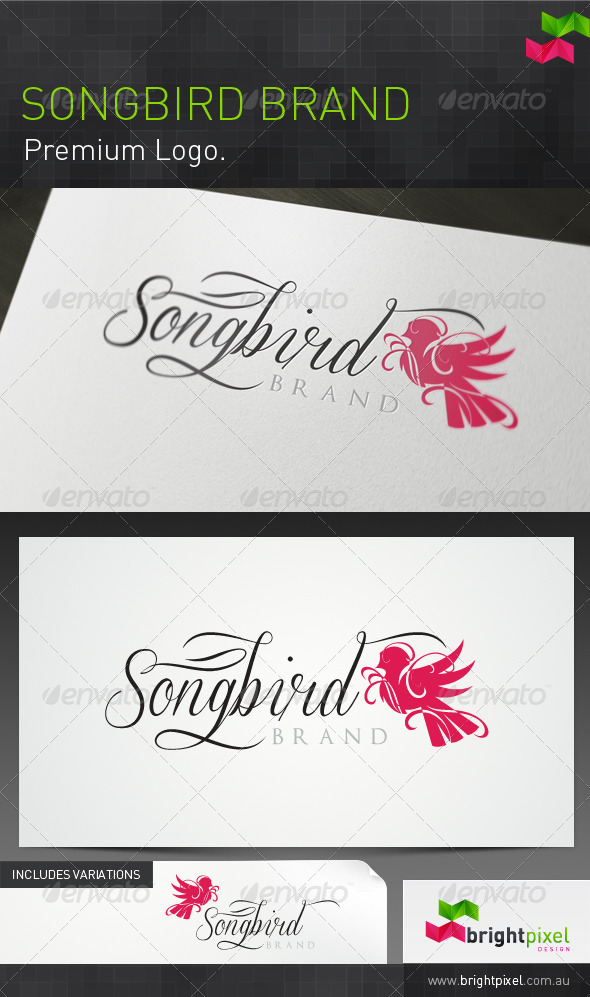 Songbird Brand - Abstract Logo Templates