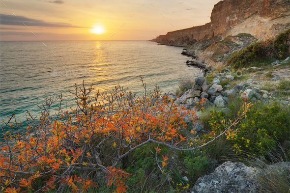 Sunset on sea cliffs - Stock Photo - Images