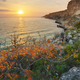 Sunset on sea cliffs - PhotoDune Item for Sale
