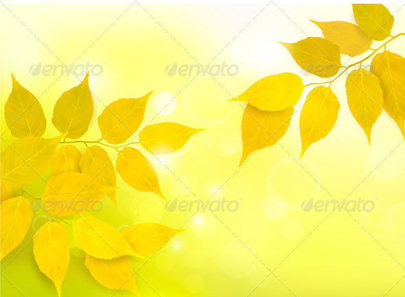 Nature background with autumn yellow leaves   - Seasons Nature