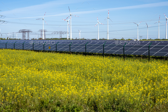 Flowering canola field with alternative energy production - Stock Photo - Images
