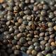 Raw Black Organic Lentils - PhotoDune Item for Sale