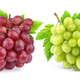 Red and green grape isolated on white background - PhotoDune Item for Sale