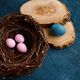 Willow branch, easter eggs in nest and tableware - PhotoDune Item for Sale