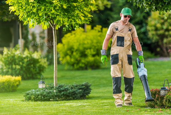Gardener Blowing Leaves of the Lawn - Stock Photo - Images