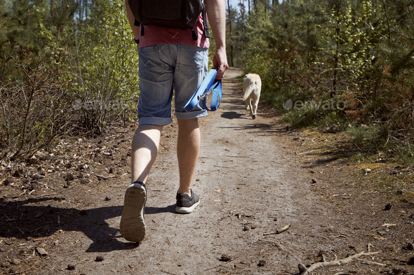 Man walking with dog on footpath in forest - Stock Photo - Images