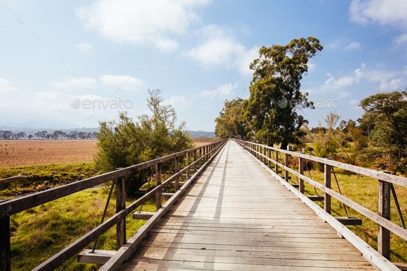 Lilydale to Warburton Rail Trail in Australia - Stock Photo - Images