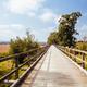 Lilydale to Warburton Rail Trail in Australia - PhotoDune Item for Sale