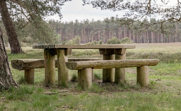 Picnic Table and Benches - Stock Photo - Images