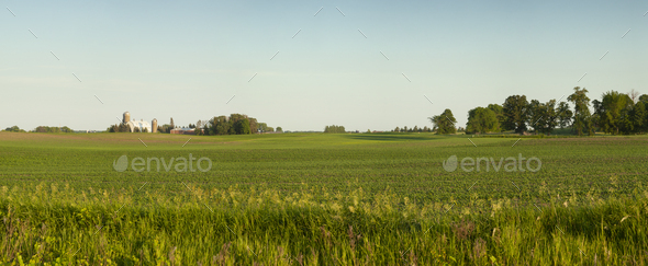 Panorama of a farm and fields on a sunny spring evening in Minnesota - Stock Photo - Images