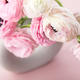 Tender ranunculus flowers in ceramic vase - PhotoDune Item for Sale
