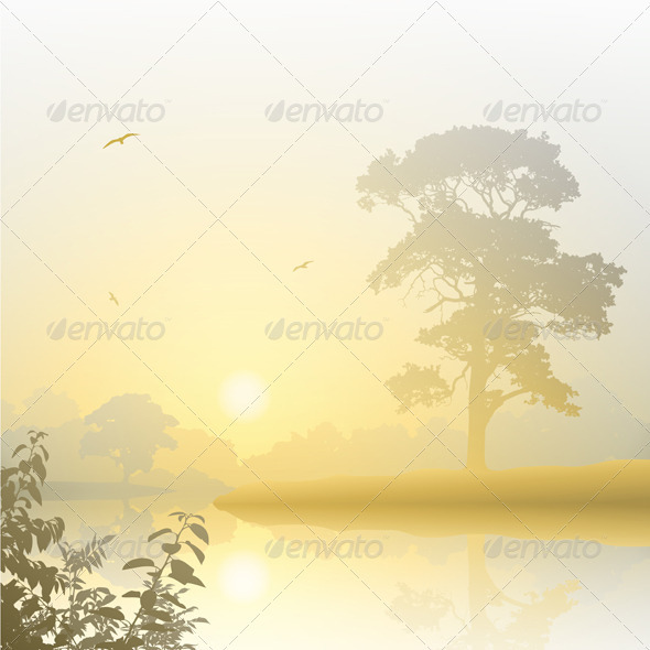 Misty Landscape - Landscapes Nature