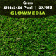 Grass - GraphicRiver Item for Sale