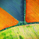 Aerial drone top view fields - PhotoDune Item for Sale
