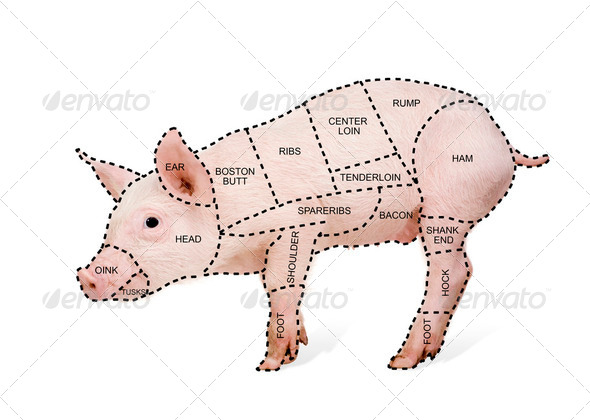 Butcher's pig chart - Stock Photo - Images