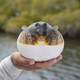 Fishing guide holds up an inflated smooth puffer caught on the gulf coast of Florida - PhotoDune Item for Sale