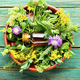 Natural medicine,fresh plants,healing herbs - PhotoDune Item for Sale