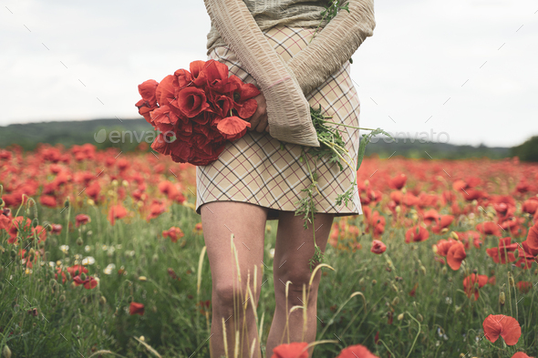 young woman holding a bouquet of poppies in a beautiful field - Stock Photo - Images