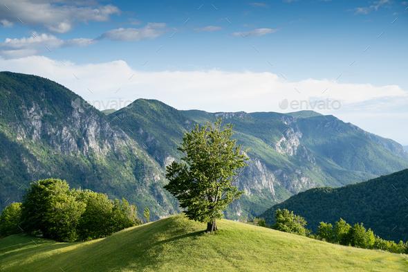 majestic beautiful mountain landscape scenery in Valea Cernei Romania - Stock Photo - Images