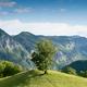 majestic beautiful mountain landscape scenery in Valea Cernei Romania - PhotoDune Item for Sale