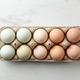 fresh raw bio eggs - PhotoDune Item for Sale