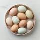 bowl of fresh raw bio eggs - PhotoDune Item for Sale