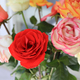 Beautiful bouquet of bright colorful roses - PhotoDune Item for Sale