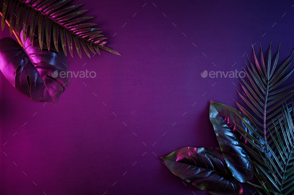 Moody contemporary illuminated night background with copy space and tropical palms - Stock Photo - Images