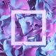 Natural leaves and white border in neon lighting. - PhotoDune Item for Sale
