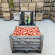 Modern production and industry, work at storage and sale of organic fruits - PhotoDune Item for Sale