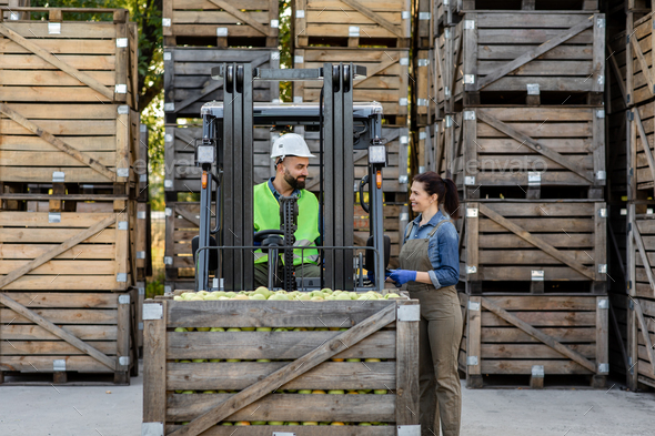 Happy young bearded guy driver in helmet in forklift truck with box full green apples - Stock Photo - Images