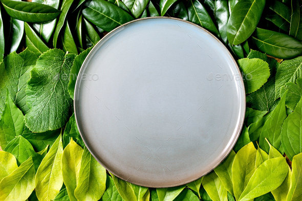 Empty ceramic plate on background made of green leaves - Stock Photo - Images