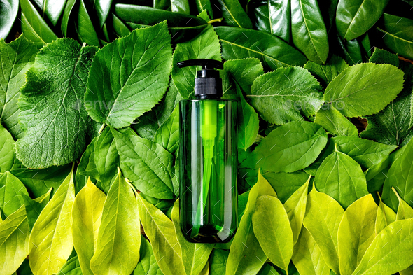 Empty green plastic bottle for soap on background made of green leaves - Stock Photo - Images