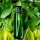Empty green plastic bottle for soap on background made of green leaves - PhotoDune Item for Sale