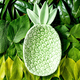 Ceramic green pineapple on background made of green leaves - PhotoDune Item for Sale