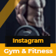 Gym & Fitness Promo B79 - VideoHive Item for Sale